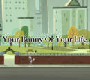Your Bunny or Your Life