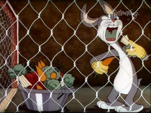 Merrie Melodies - Elmer's Pet Rabbit