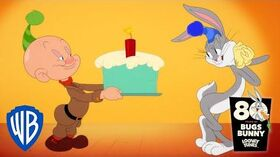 Happy Birthday Bugs Bunny! Looney Tunes WB Kids