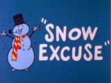 Snow Excuse