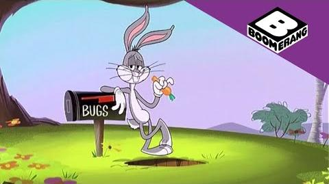 Wabbit New Series on Boomerang