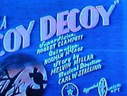 Coydecoy1