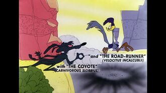 Road Runner and Wile E. Coyote - Fastest with the Mostest (1960)