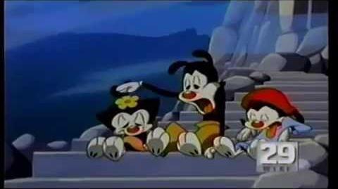 Animaniacs Promo- Craving (1994)