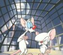 Pinky and the Brain Episode Guide and List