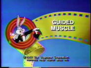 Lt tbbats guided muscle