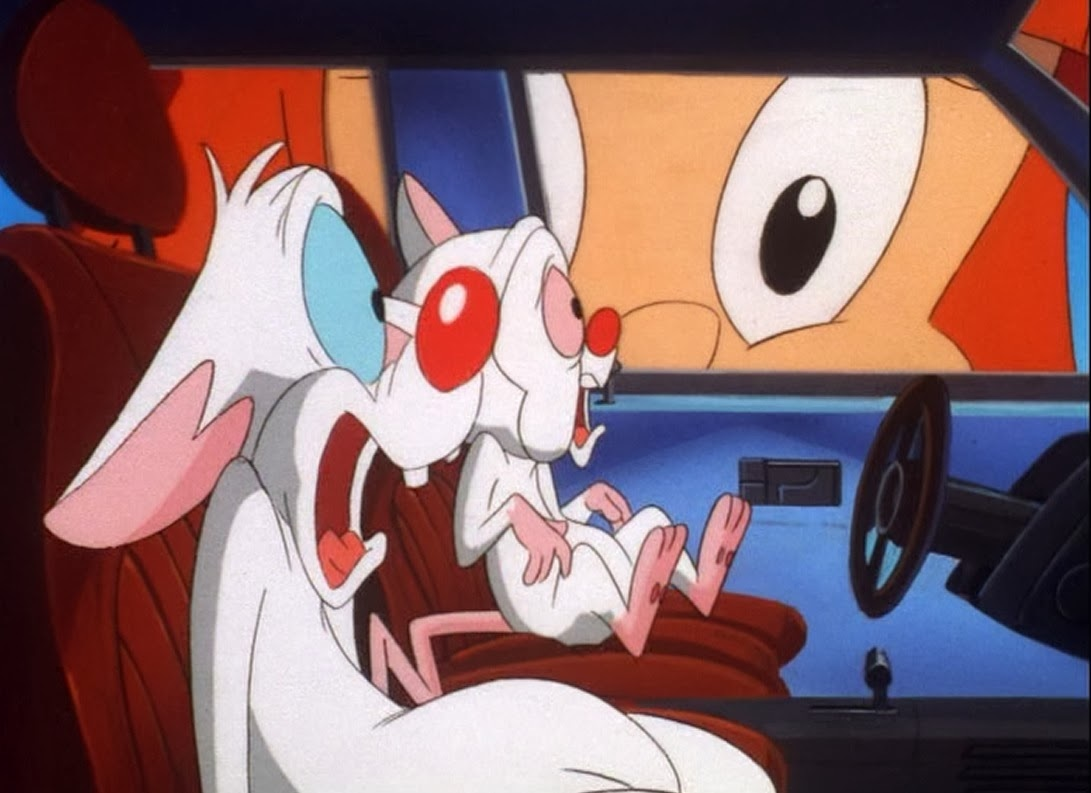 Animaniacs Elmyra Duff elmyra duff | looney tunes wiki | fandom