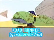 Road Runner quickius birdius