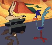 Road-Runner-si-Wile-E-Coyote