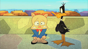 Daffy Watches Porky Hide his Shame