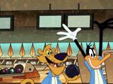 Daffy's Ducks