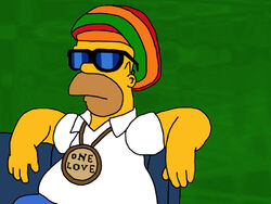 Homer Simpson SWAG
