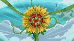 Sunflower Monster