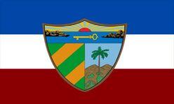 Bandera LC Oficial