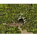Npccamp woods inactive