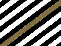 Barbiflag