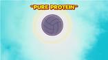 Proteinapurattg