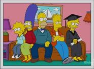 The Simpsons 14