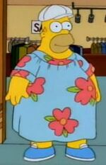 Homer Muumuu Simpson Wiki En Español Fandom Powered By Wikia