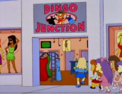 Dingo junction