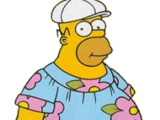 Homer Muumuu