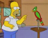 Homer vs Loro