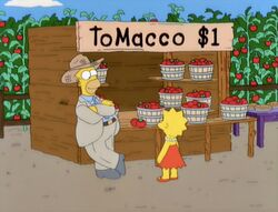 Simpsons-tomacco-
