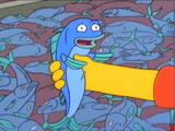 Magic Fish