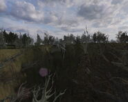 Water Dam (Countryside, Lost Alpha) (2)