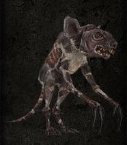 Rat's meat world