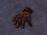 Hand of a Burer