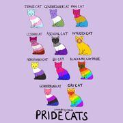 Pride cats