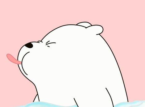 Les ours ours au-dessus que nous portons ours Wallpaper Blog Naver (2)