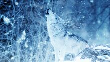 Howling Wolf 416118-1288x726