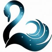 Cosmic Black Swan