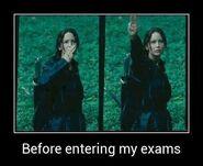 Katniss Meme