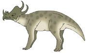Boar Beast