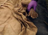 Qarinah hand (311)