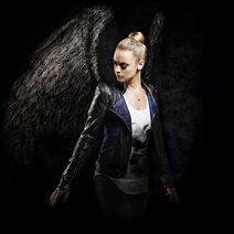 Season 5 Tamsin (wings)