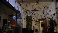 Caltrops in Lauren apt (310)