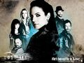 Lost Girl wallpaper.jpg
