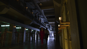 Hecuba Prison-Caged Fae (301)