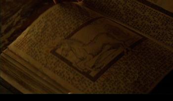 Unicorn in Fae Book (108)