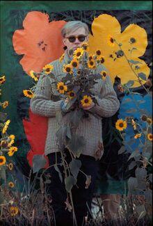 Warhol 1964