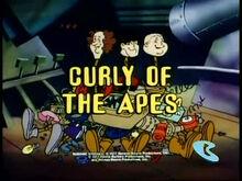 Curlyoftheapes