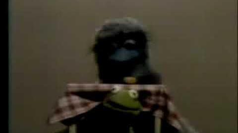 Classic Sesame Street Kermit on Between (German dub)
