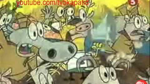 TV5 Kids - Camp Lazlo