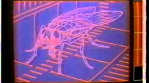 Eros America (partially found Cinemax documentary series; 1983)