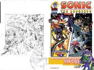 Sonic245