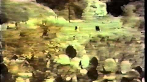The Texas Wheelers (1974 ABC Sitcom)